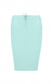 Mint Musthave Skirt