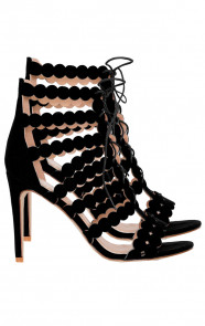 Gladiator Heels Exclusive Zwart