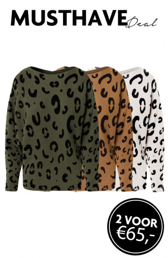 Musthave-Deal-Leopard-Oversized-Truien